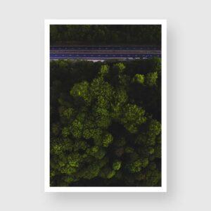 green tree tops photo print norwich