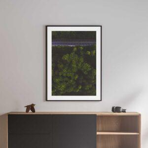 green tree tops photo print norwich black frame