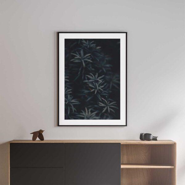 yew tree needles framed photo print